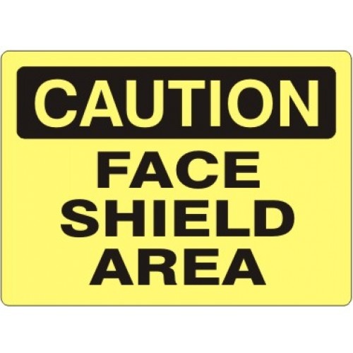 FACESHIELD2